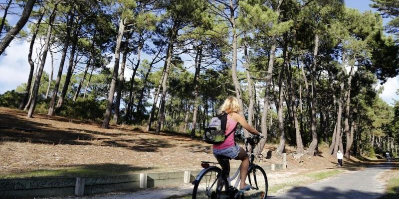 Médoc à vélo (lacanau hourtin carcan) 50 kms de pistes cyclables